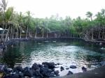 Hawaii 2009 164