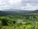 Hawaii_2009_319