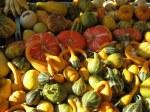 Padova market
